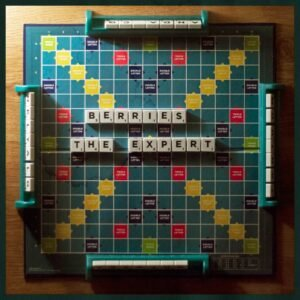 BERRIES: The Expert – single review